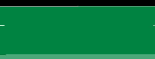 The Bank of Canton logo