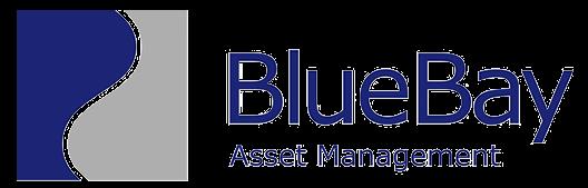 BlueBay Asset Management USA, LLC