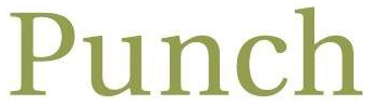 Punch & Associates Investment Management, Inc. logo