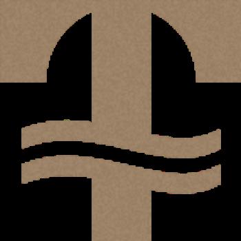 Tumwater Wealth Management, LLC logo